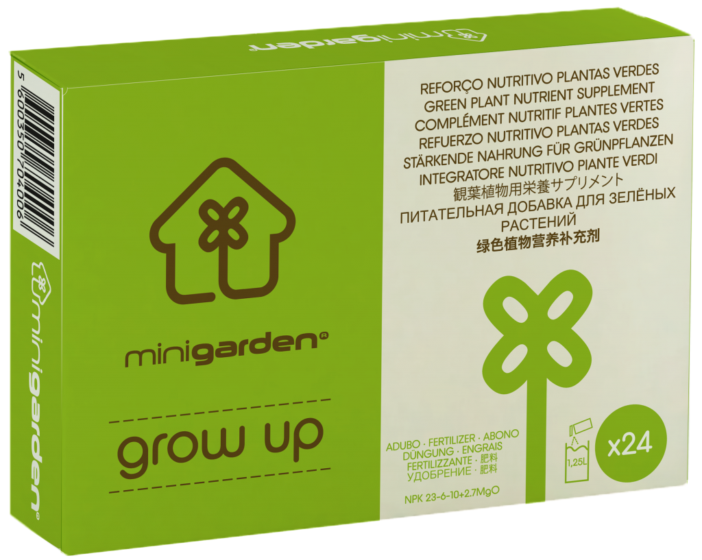 minigarden grow up green leafy green foliage plant food