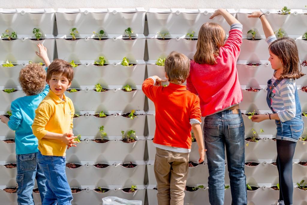 kids urban gardening