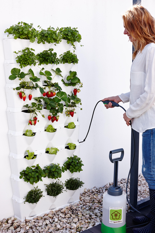 Minigarden Vertical Kitchen Garden | Minigarden US