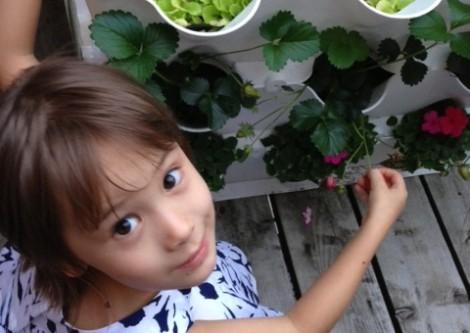 Algunas plantas pueden ser letales para los niños - latimes
