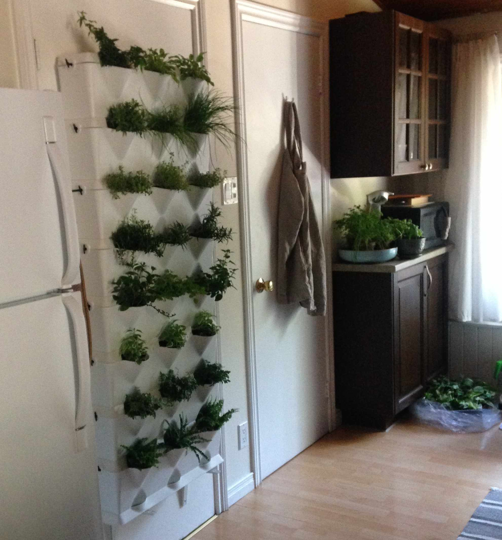 Minigarden in action kim m s vertical garden minigarden us - Vertical gardens miniature oases ...