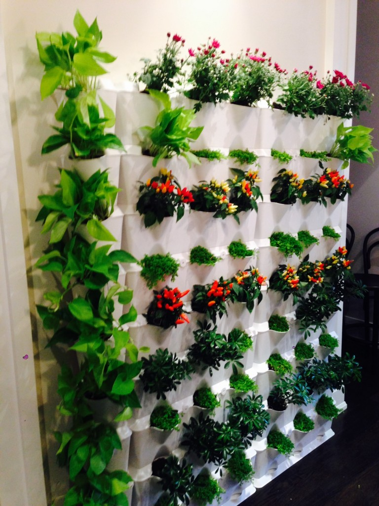 Vertical gardening brings your walls to life minigarden us - Vertical gardens miniature oases ...