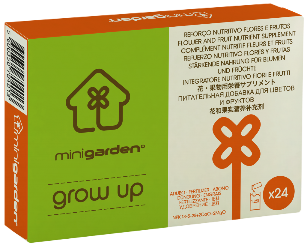 minigarden grow up orange flowering fruit bearing plant food