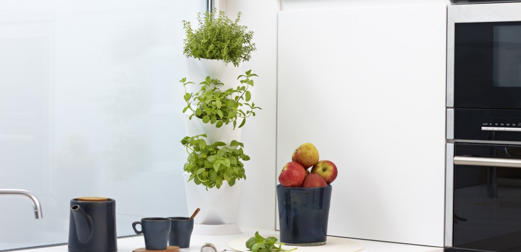 Indoor Minigarden Corner