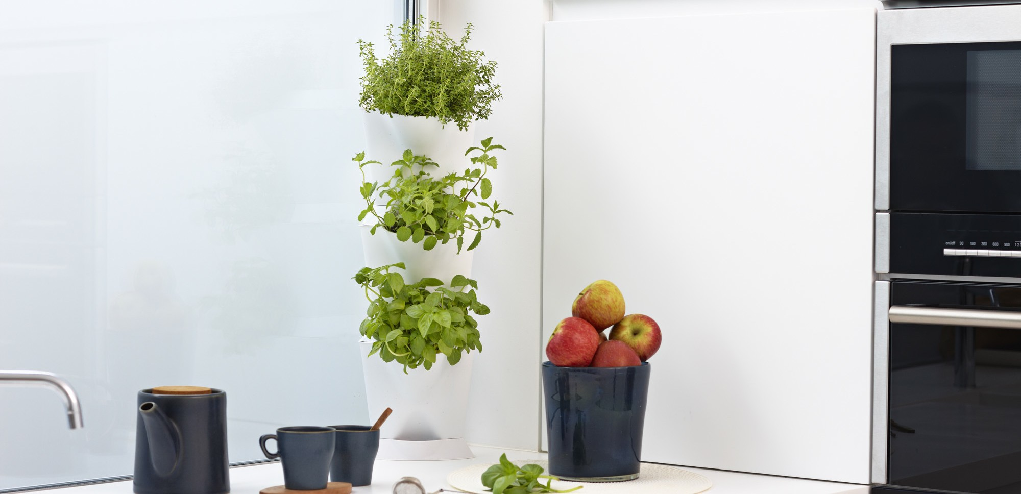 Indoor Minigarden Corner