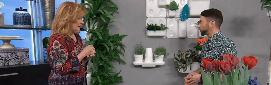 Marilyn Denis Minigarden Small Spaces