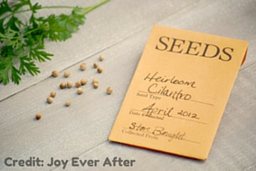 Printable Seed Envelopes